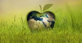 Checkliste Nachhaltigkeit