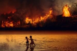 Regenwald Amazonas brennt