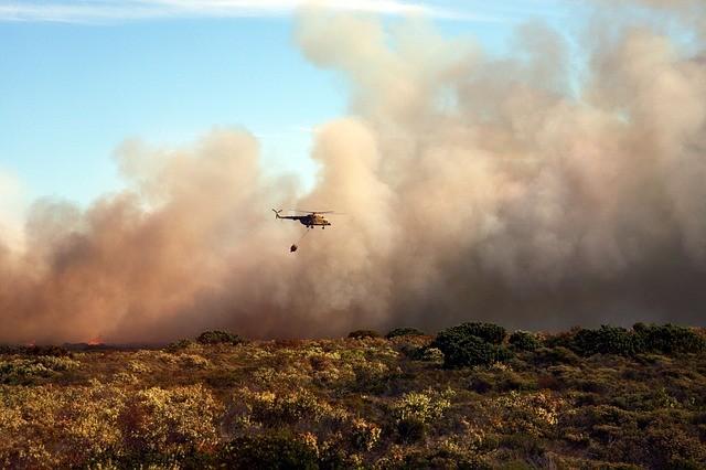 Buschbrände Australien