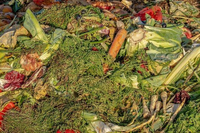 Kompostieren zu Hause